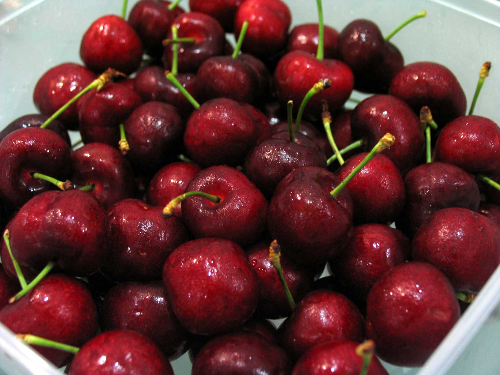 Fresh Cherries2